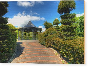 The Bandstand Wood Print by Steve Purnell