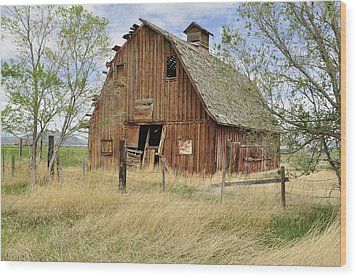 Wood Print featuring the photograph the Barn  by Fran Riley