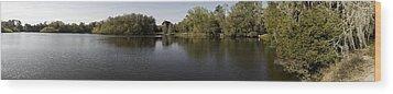 The Baughman Center At The University Of Florida Panoramic. Wood Print by William Ragan