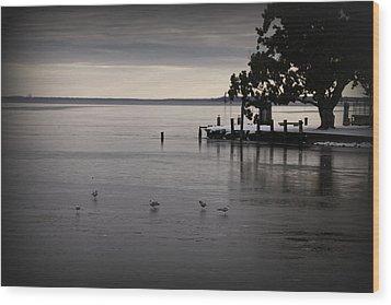 The Bay Is Frozen Wood Print by Carolyn Ricks