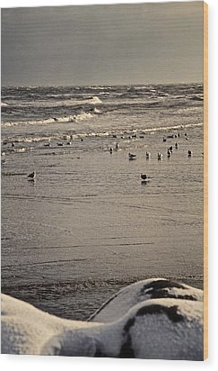 The Beach Is Ours Wood Print by Odd Jeppesen