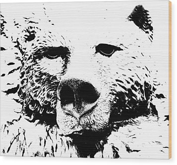 The Bear Wood Print by Charlie and Norma Brock