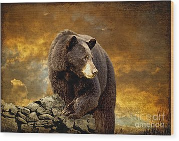 The Bear Went Over The Mountain Wood Print by Lois Bryan