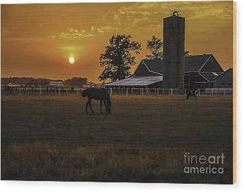 The Beauty Of A Rural Sunset Wood Print by Mary Carol Story