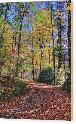 The Beauty Of Fall Wood Print