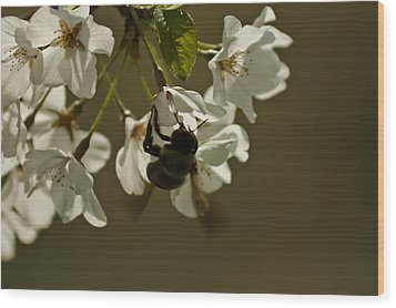 Wood Print featuring the painting The Bee by Debra Crank