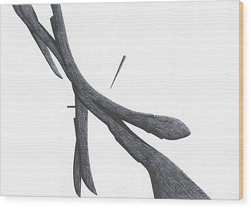 The Betrayal Wood Print by Giuseppe Epifani