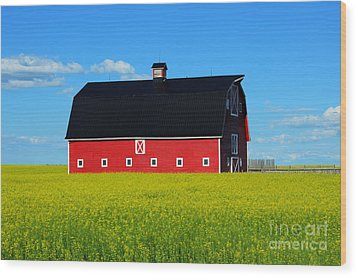 The Big Red Barn Wood Print by Bob Christopher