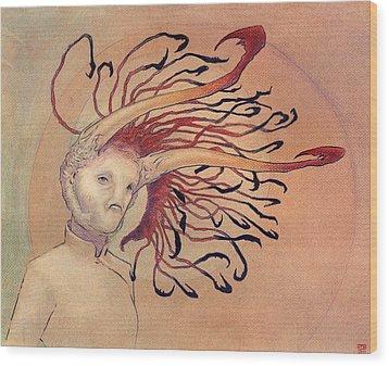 The Bihorn Wood Print by Ethan Harris
