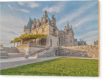 The Biltmore Wood Print by Donnie Smith