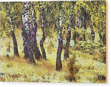 The Birch Forest Wood Print by Odon Czintos