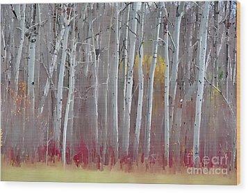 The Birches - Single Wood Print by Andrea Kollo