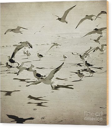 The Birds Wood Print by Sharon Coty