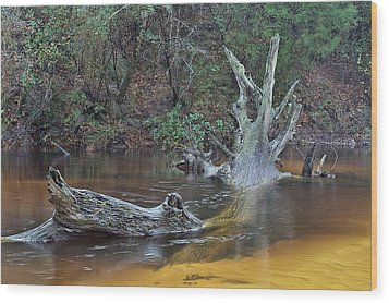 The Black Water River Wood Print by JC Findley