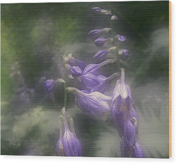 The Blue Lilies Wood Print