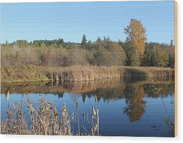 Wood Print featuring the photograph The Blue Mirror by E Faithe Lester
