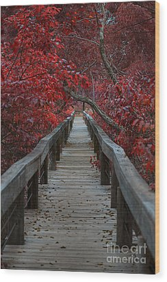 The Boardwalk Wood Print by Douglas Barnard