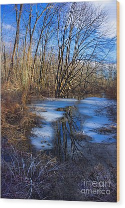 Wood Print featuring the photograph The Bog by Rafael Quirindongo
