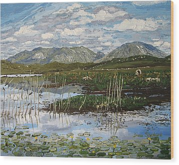 The Bog Road Roundstone Connemara Wood Print by Diana Shephard
