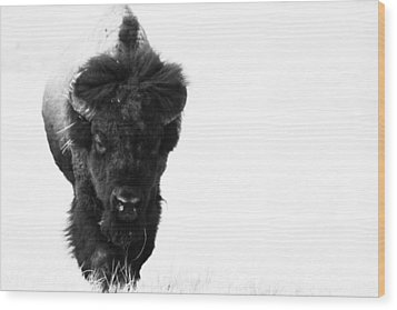 The Boss Wood Print by Michele Richter