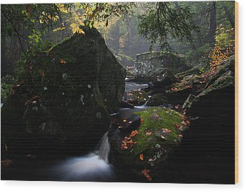The Boulder Wood Print by Andrea Galiffi