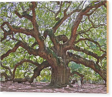 The Branches Of Life Wood Print by Eve Spring
