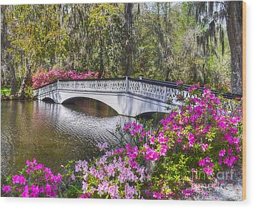 The Bridge At Magnolia Plantation Wood Print