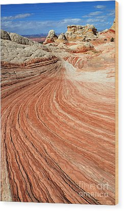 The Brilliance Of Nature 3 Wood Print by Bob Christopher
