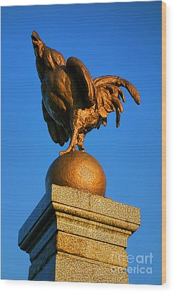 The Bronze Rooster Wood Print by Olivier Le Queinec