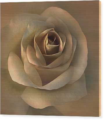 The Bronze Rose Flower Wood Print by Jennie Marie Schell