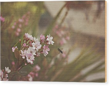 The Busy Bee Wood Print by Angela A Stanton