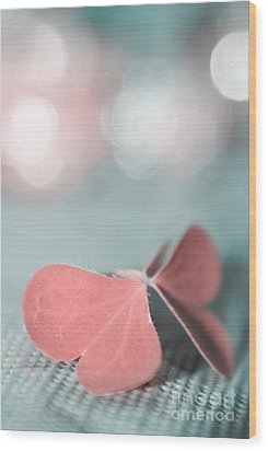 The Butterfly P02b Wood Print by Aimelle