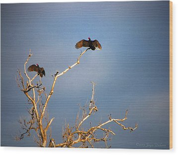 The Buzzard Roost Wood Print by Joyce Dickens