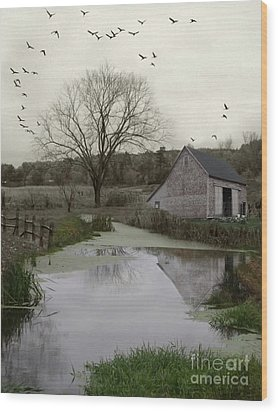 Wood Print featuring the photograph The Calm by Mary Lou Chmura