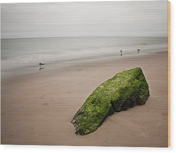 The Calm Wood Print by Michael Murphy