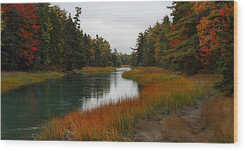 The Carrying Place Wood Print by Mike Farslow