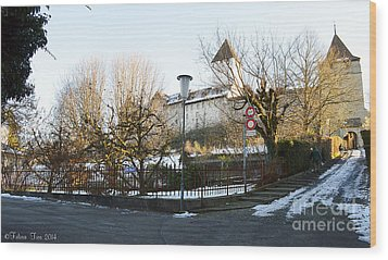 Wood Print featuring the photograph The Castle In Winter Light by Felicia Tica
