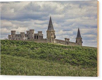 The Castle - Versailles Ky Wood Print