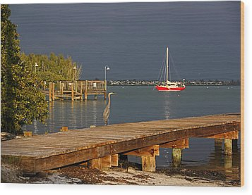 Wood Print featuring the photograph The Casual Observer by HH Photography of Florida