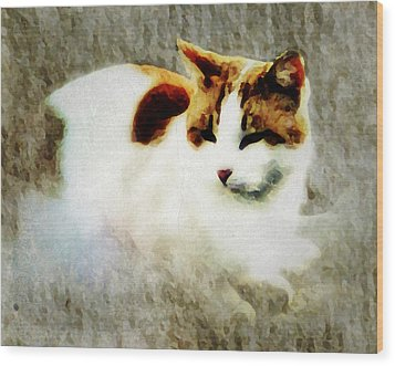 Wood Print featuring the digital art The Cat by Persephone Artworks