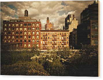 The Chelsea Skyline - High Line Park - New York City Wood Print by Vivienne Gucwa