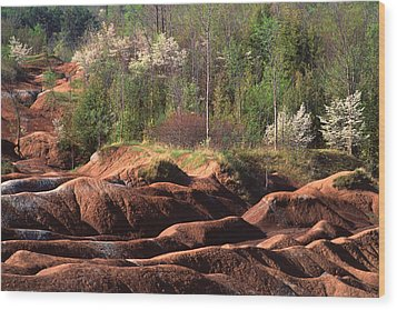 Wood Print featuring the photograph The Cheltenham Badlands by Gary Hall