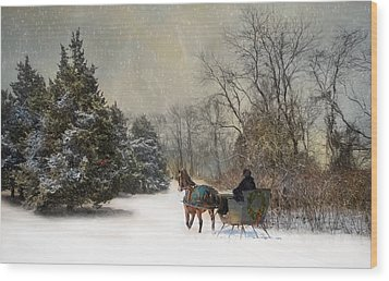 The Christmas Sleigh Wood Print by Robin-Lee Vieira