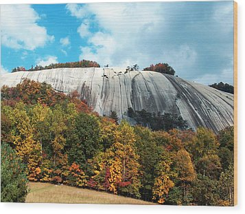 Wood Print featuring the painting The Climb by Debra Crank