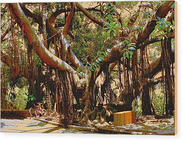 The Climbing Tree Wood Print