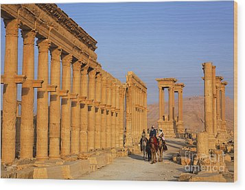 The Colonnaded Street Palmyra Syria Wood Print by Robert Preston