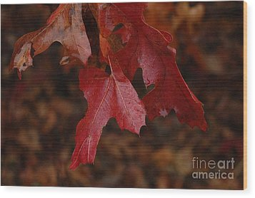 The Color Of Fall Wood Print by Art Hill Studios
