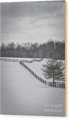 The Color Of Winter - Bw Wood Print by Mary Carol Story