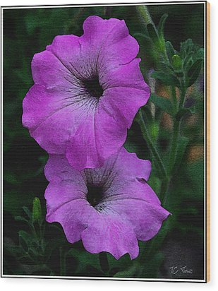 Wood Print featuring the photograph The Color Purple   by James C Thomas