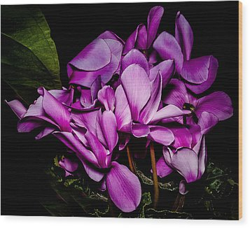 The Color Purple Wood Print